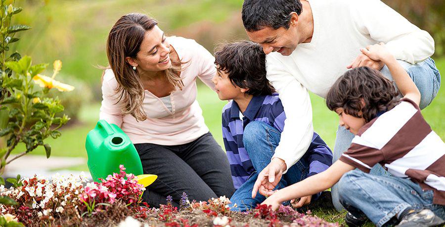 El bot nico acerca a los padres e hijos los talleres for Talleres jardin botanico
