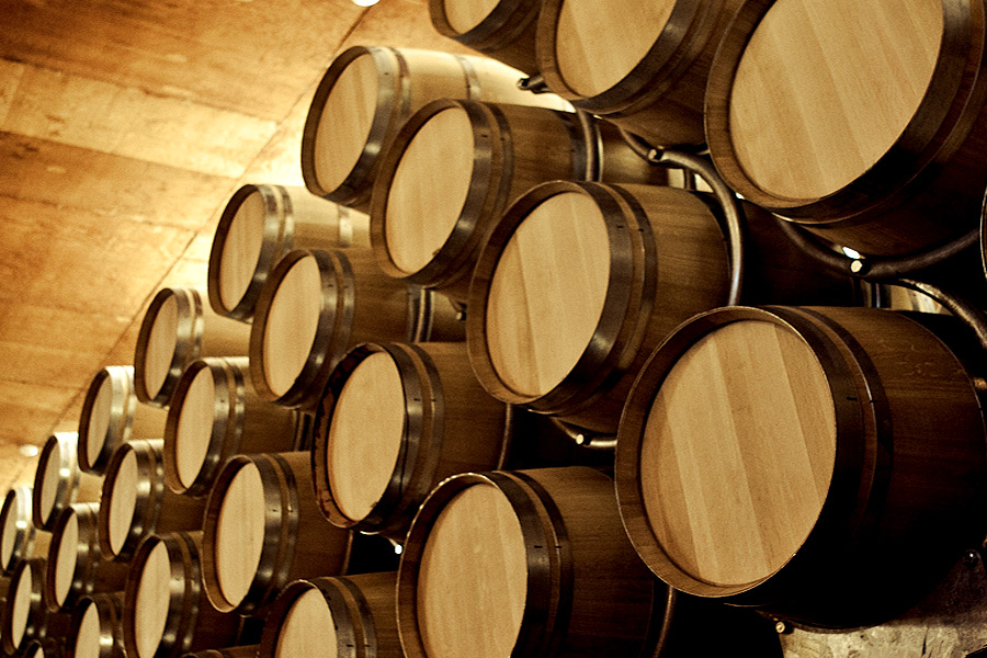 visitas guiadas de vinos