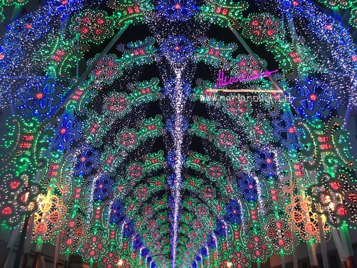 Ruzafa y malvarrosa inauguran las luces de sus calles con for Malvarrosa planta