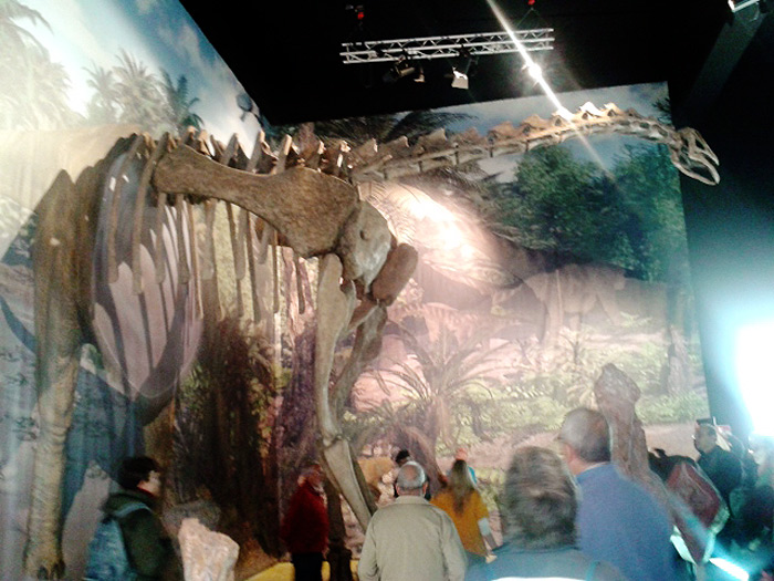 titania dinopolis riodeva
