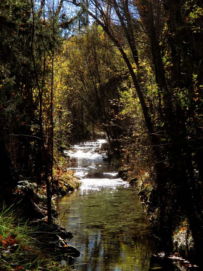 Otro de los rincones más hermosos de la senda fluvial del Río Torrijas en Manzanera, Teruel.