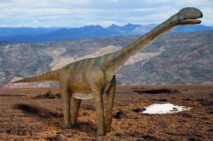 Riodeva-Libros-titania dinopolis excursion adzucats