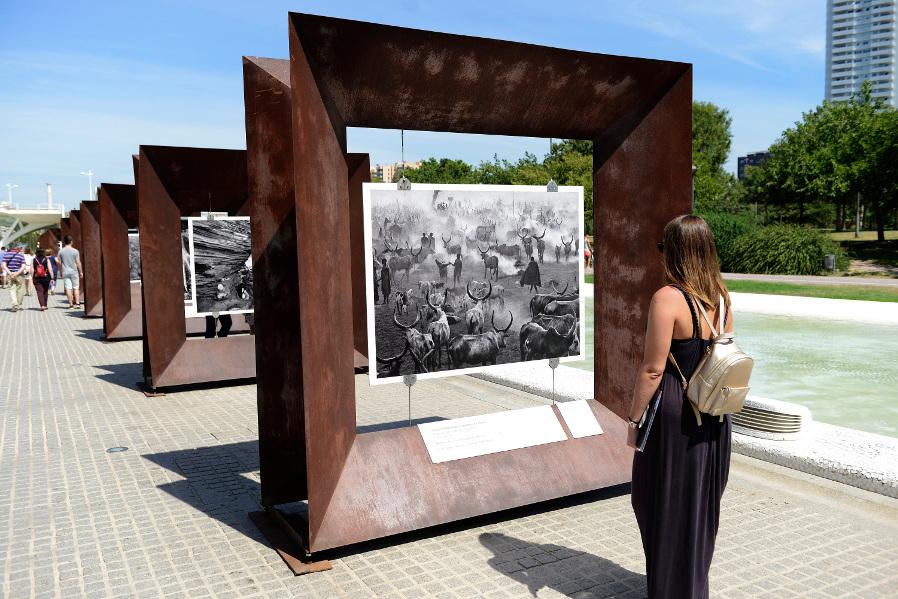 ciudad-artes-ciencias-exposicion-salgado arte en calle