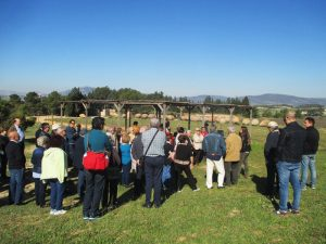 terres alforins vinos do valencia turismo enocultural adzucats excursiones en grupo