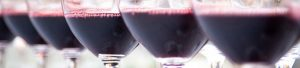 cursos-cata-novedades tematicas vinos-do-valencia-2017