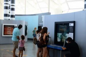 exposicion -bosque-cromosomas-museu-ciencies valencia