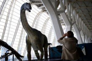 museo ciencias exposiciones els nostres dinosaures